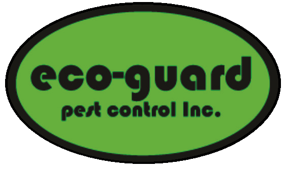 Eco Guard Pest Control Inc Evicting Pests For Over 45 Years